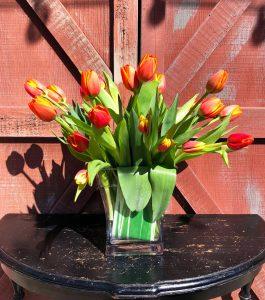 local-cut-tulips